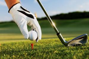 Chơi golf giữa mùa dịch, giám đốc sở, cục phó ở Bình Định thành F1