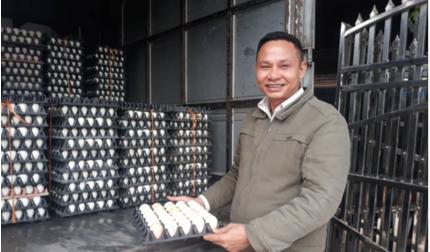 Hải Phòng: Giá trứng gà, giá trứng vịt tăng đột biến