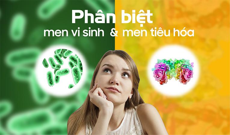 men vi sinh và men tiêu hóa