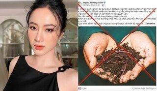 Angela Phương Trinh đối diện án phạt vì tuyên truyền về giun đất chữa COVID-19