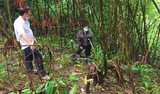 Đắk Nông: Tá hỏa phát hiện thi thể đang phân hủy bên bờ suối