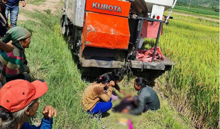 Đang bắt chuột ở cánh đồng lúa, bé trai 9 tuổi bị máy gặt cán tử vong