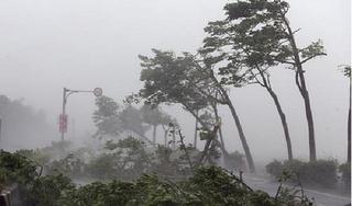 Bão số 6 gây mưa to đến rất to từ Quảng Trị đến Bình Định