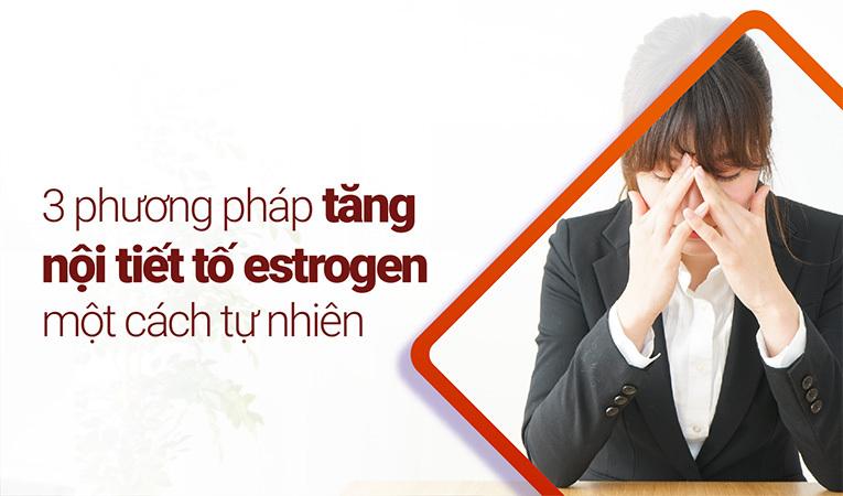 nội tiết tố estrogen