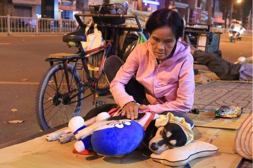 Xúc động hình ảnh những chú chó theo chân chủ nghèo trên mọi nẻo đường kiếm sống