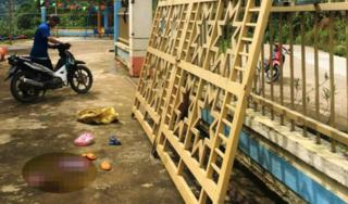 Cửa sắt ở cổng trường đổ sập khiến 2 trẻ mầm non thương vong