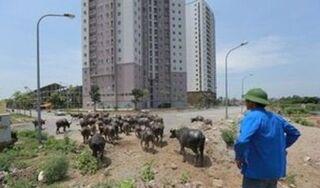 30 dự án khi Hà Tây nhập về Hà Nội 'đứng hình': Nhiều chủ đầu tư bế tắc