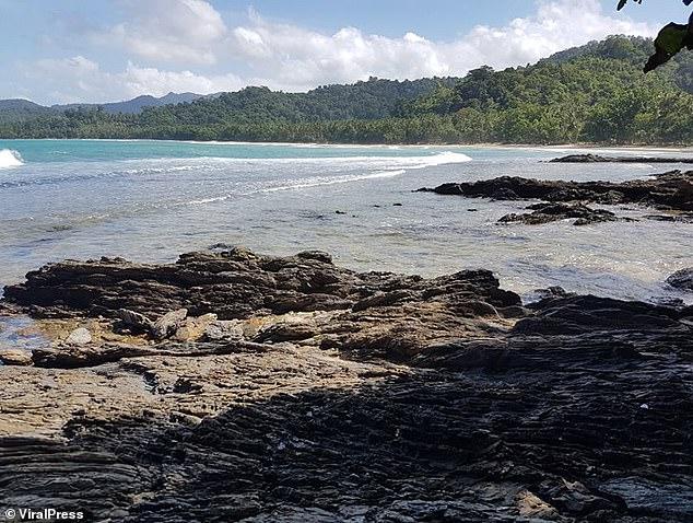 Philippines: Con bị cá sấu lôi xuống nước cắn, cha liền nhảy xuống cắn lại