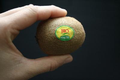 Cách trồng cây kiwi thích hợp thực hiện vào khoảng tháng 12 đến tháng 1 dương lịch
